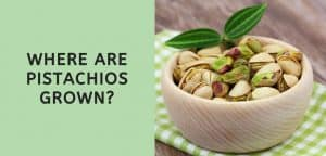 Where are Pistachios Grown?