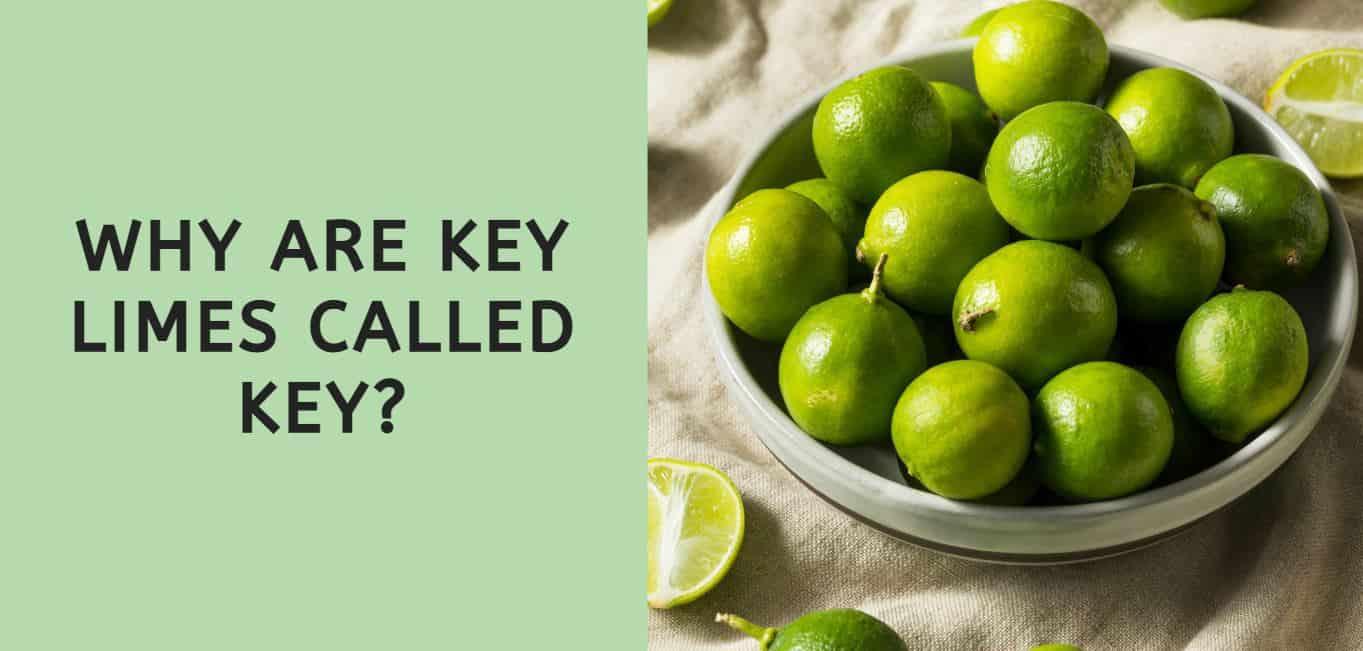 Why are Key Limes called Key?