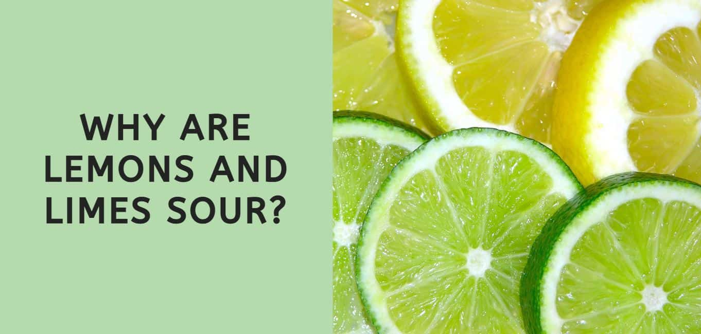 Why are Lemons and Limes Sour?
