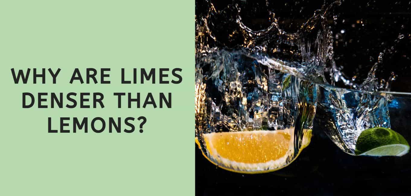Why are Limes Denser Than Lemons?