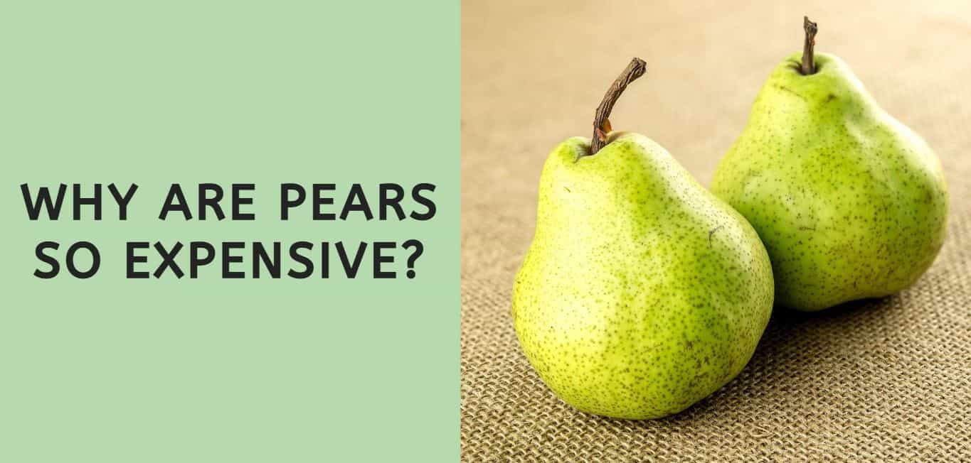 Why are Pears so Expensive?