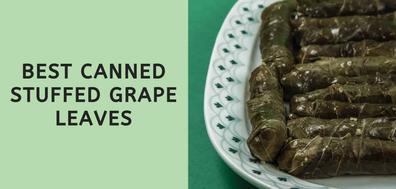 Best Canned Stuffed Grape Leaves