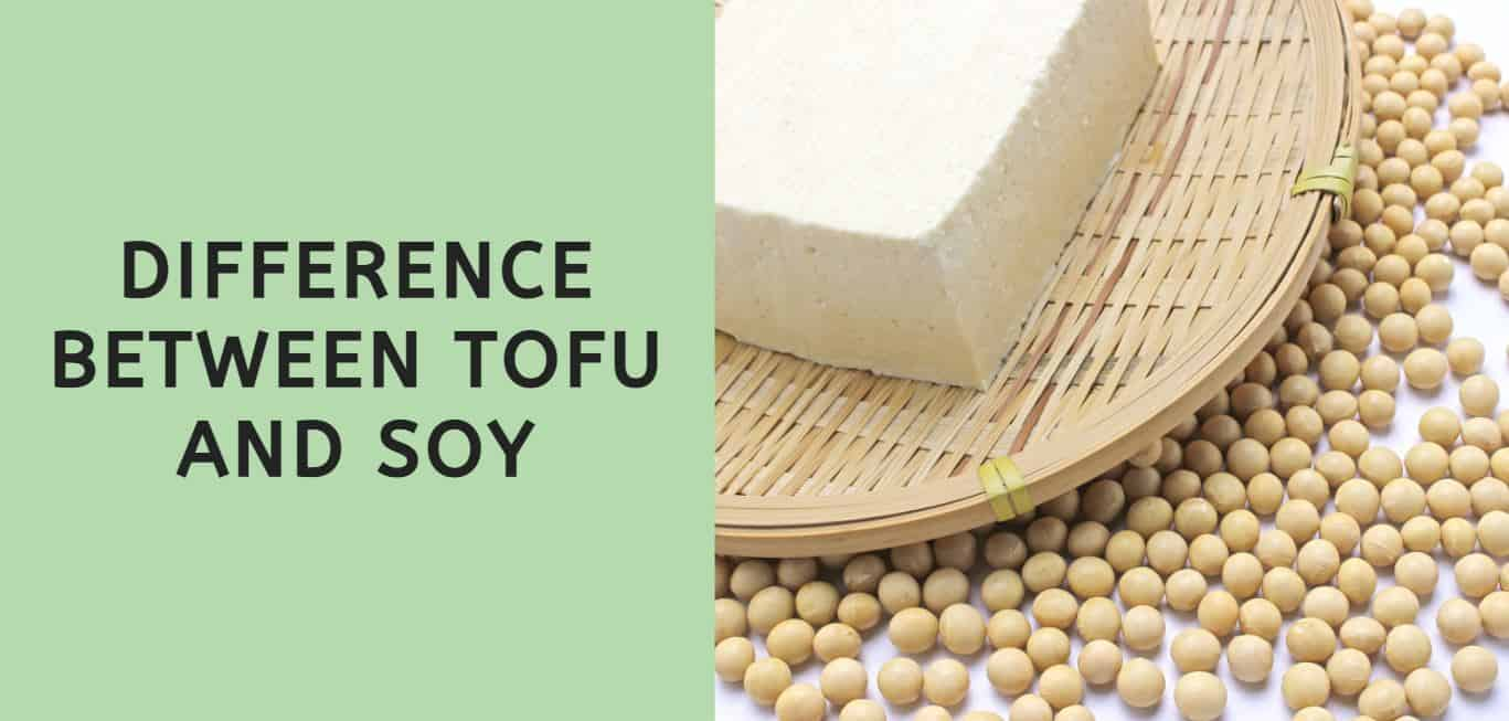 Difference Between Tofu and Soy