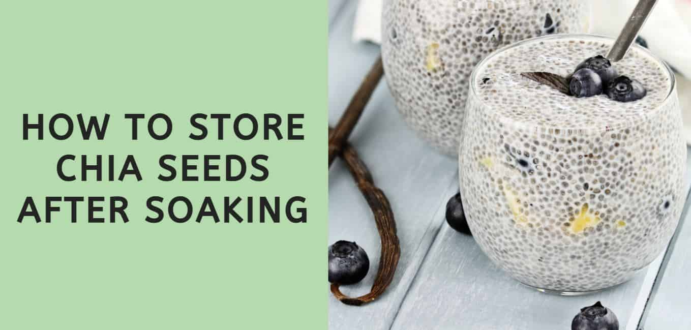 How to Store Chia Seeds After Soaking