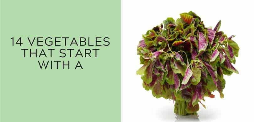 14 Vegetables That Start with A