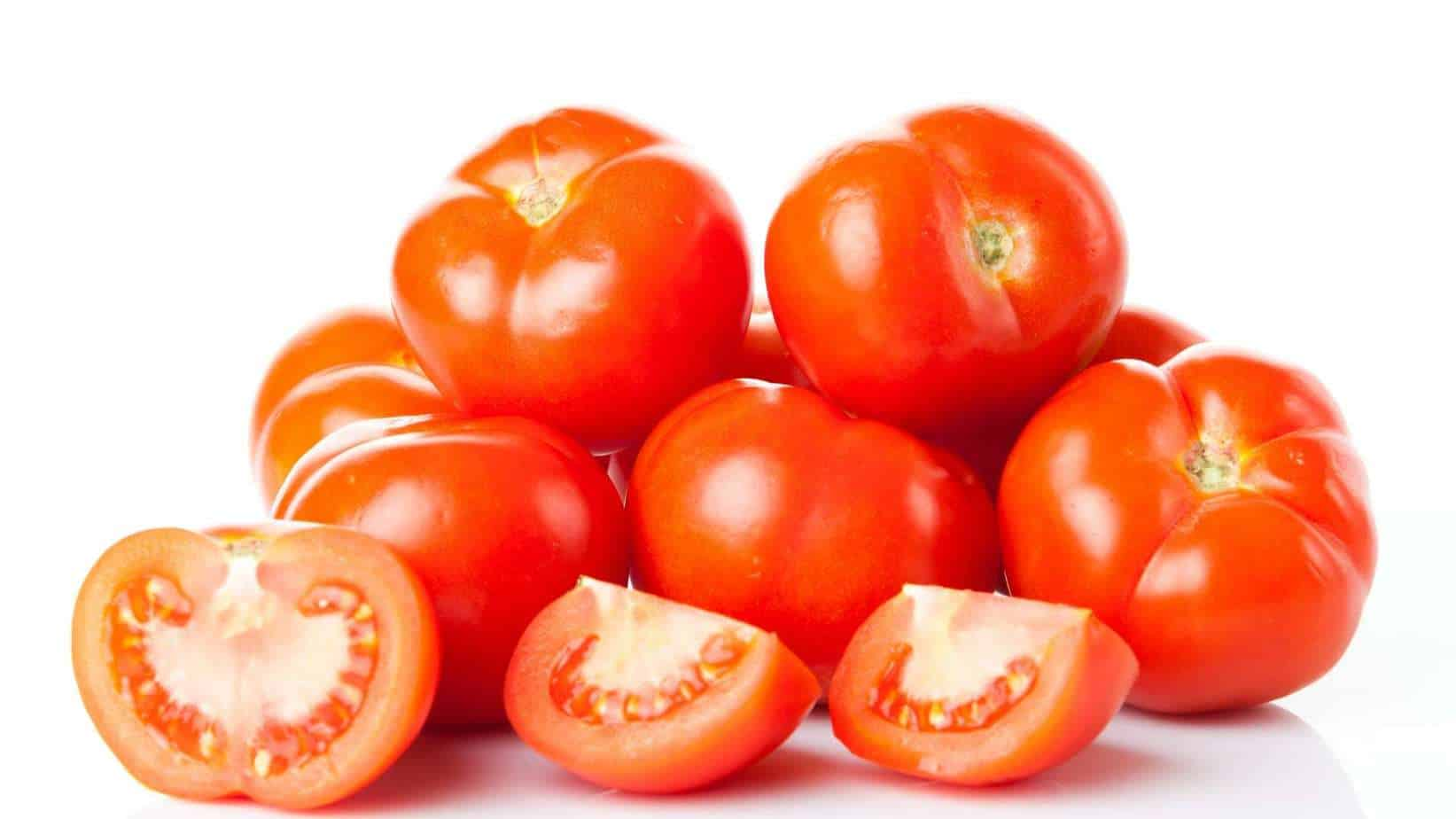 Tomaccio Tomato