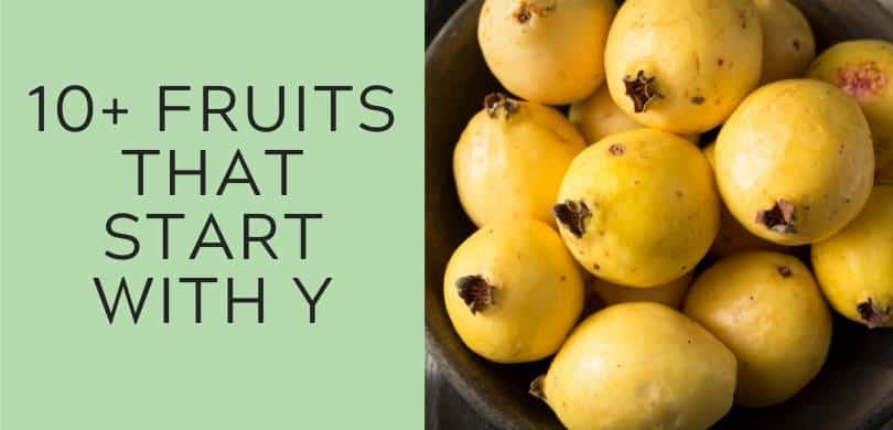 10+ Fruits that Start with Y