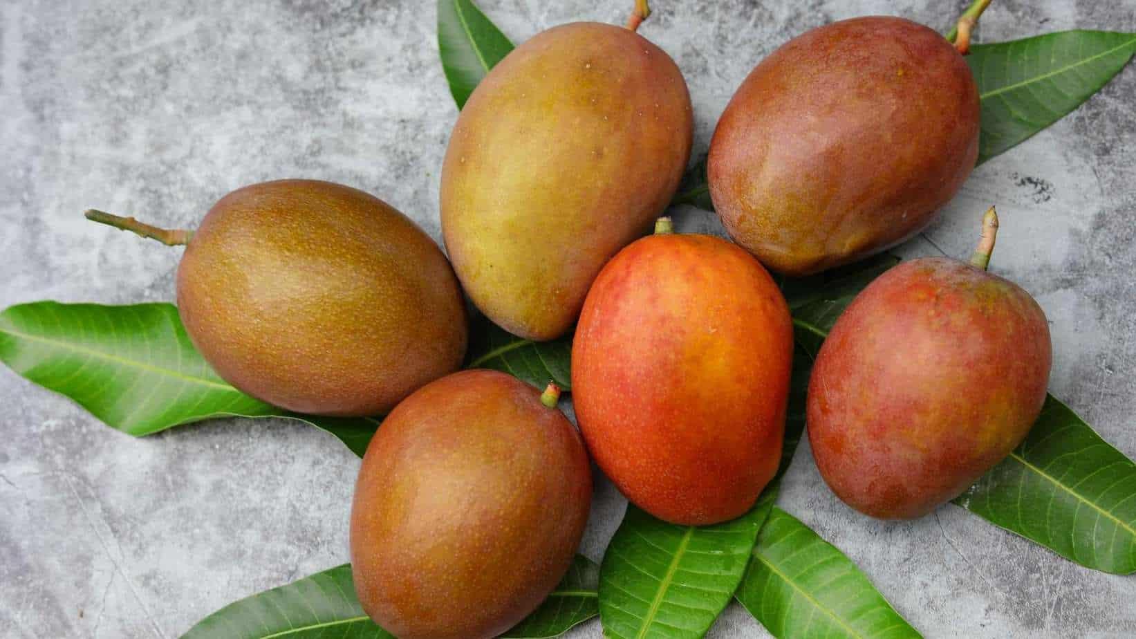 Lippens Mango