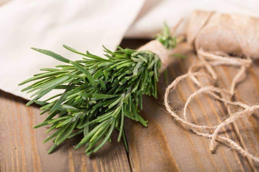 Rosemary tied