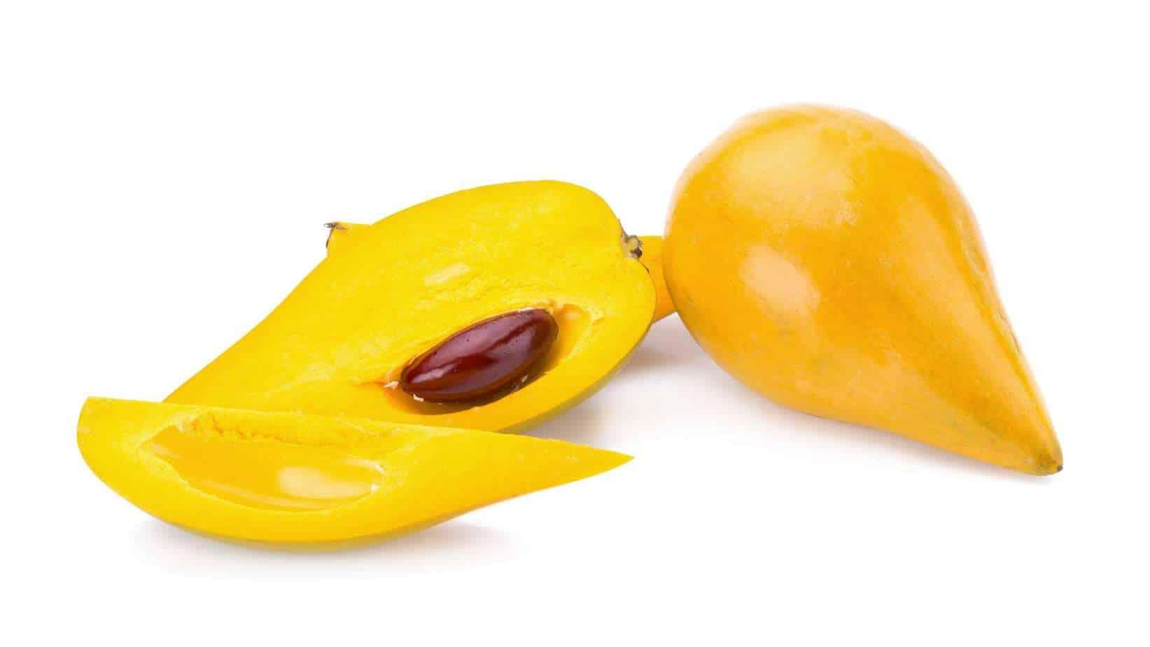 Yellow Sapote