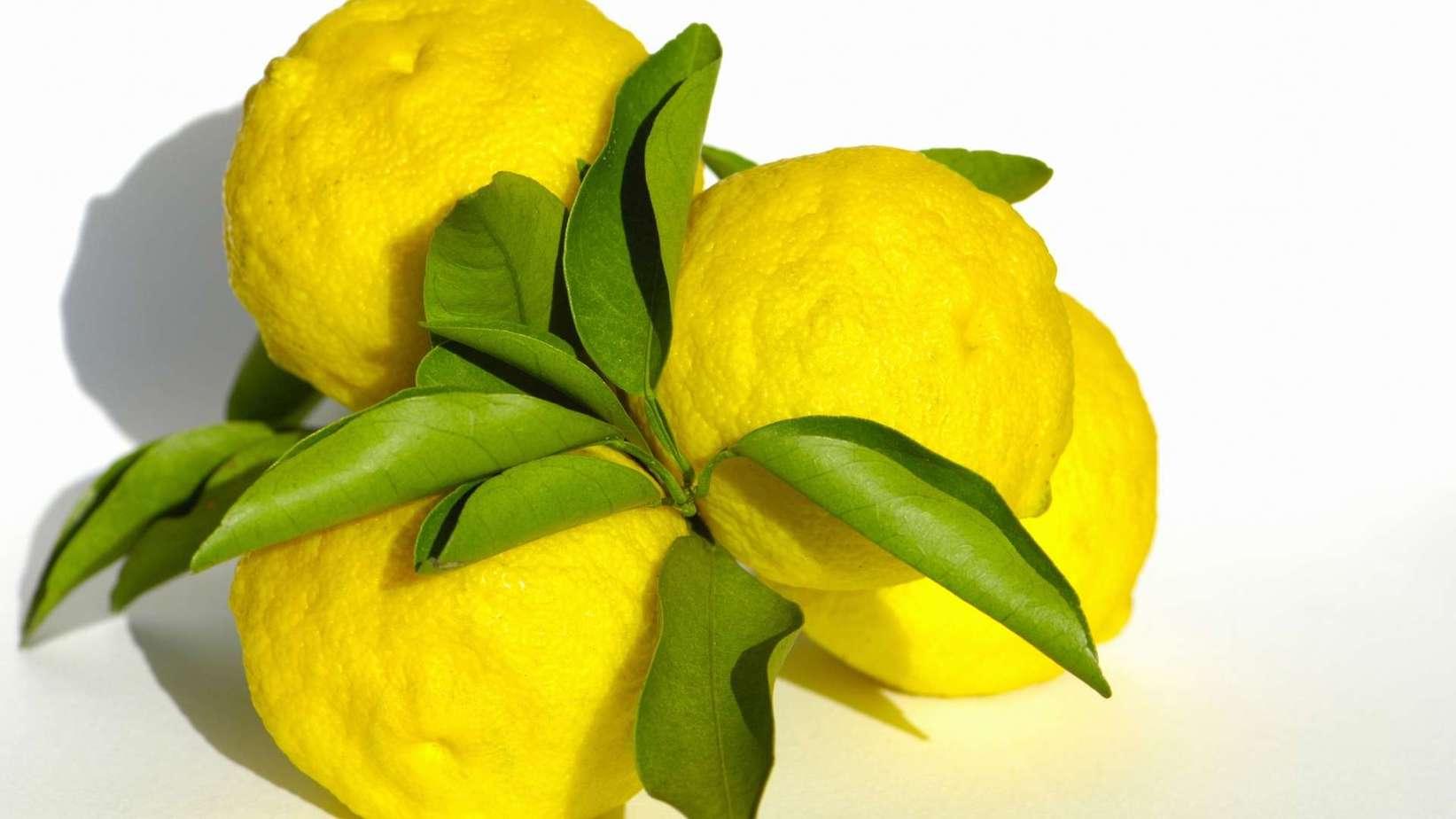 Yemenite Citron
