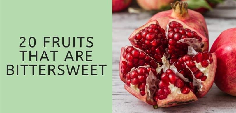 Fruits that are Bittersweet
