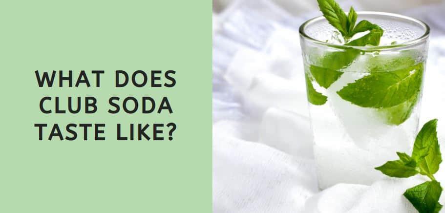 What Does Club Soda Taste Like