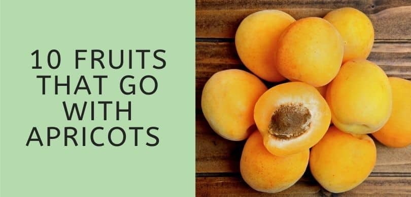 Fruits that Go with Apricots