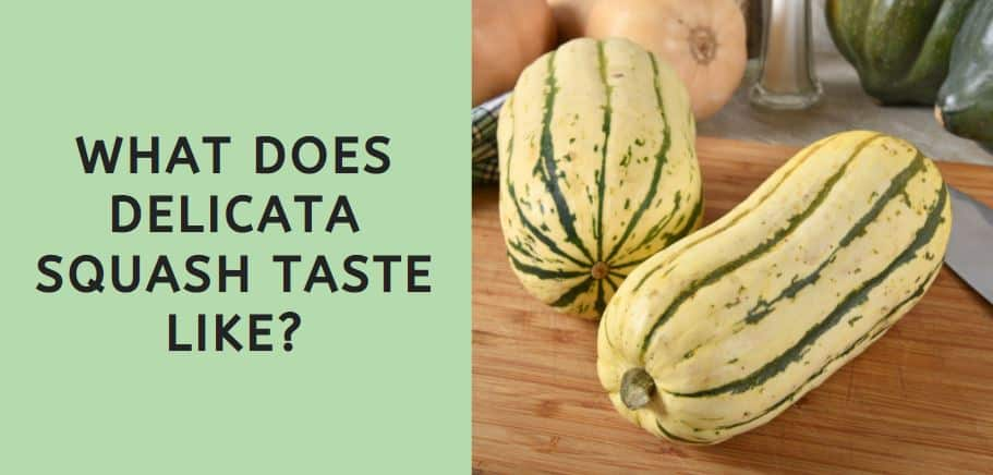 What Does Delicata Squash Taste Like