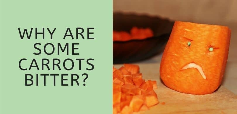 Why are Some Carrots Bitter