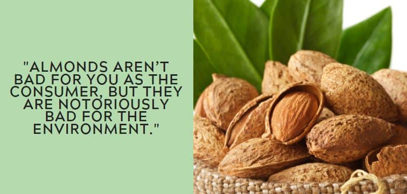 Almonds aren't bad for you as the consumer, but they are notoriously bad for the environment.