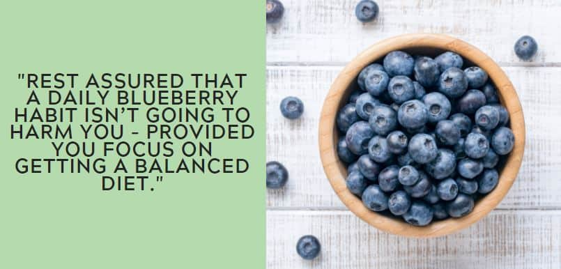 Rest assured that a daily blueberry habit isn't going to harm you – provided you focus on getting a balanced diet.