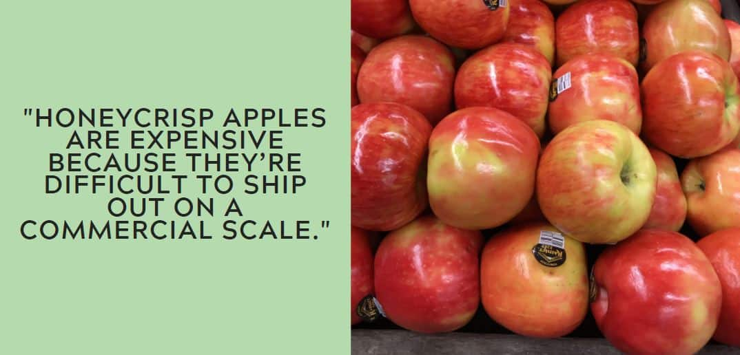 Honeycrisp apples are expensive because they're difficult to ship out on a commercial scale.