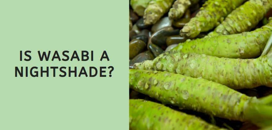 Is Wasabi a Nightshade