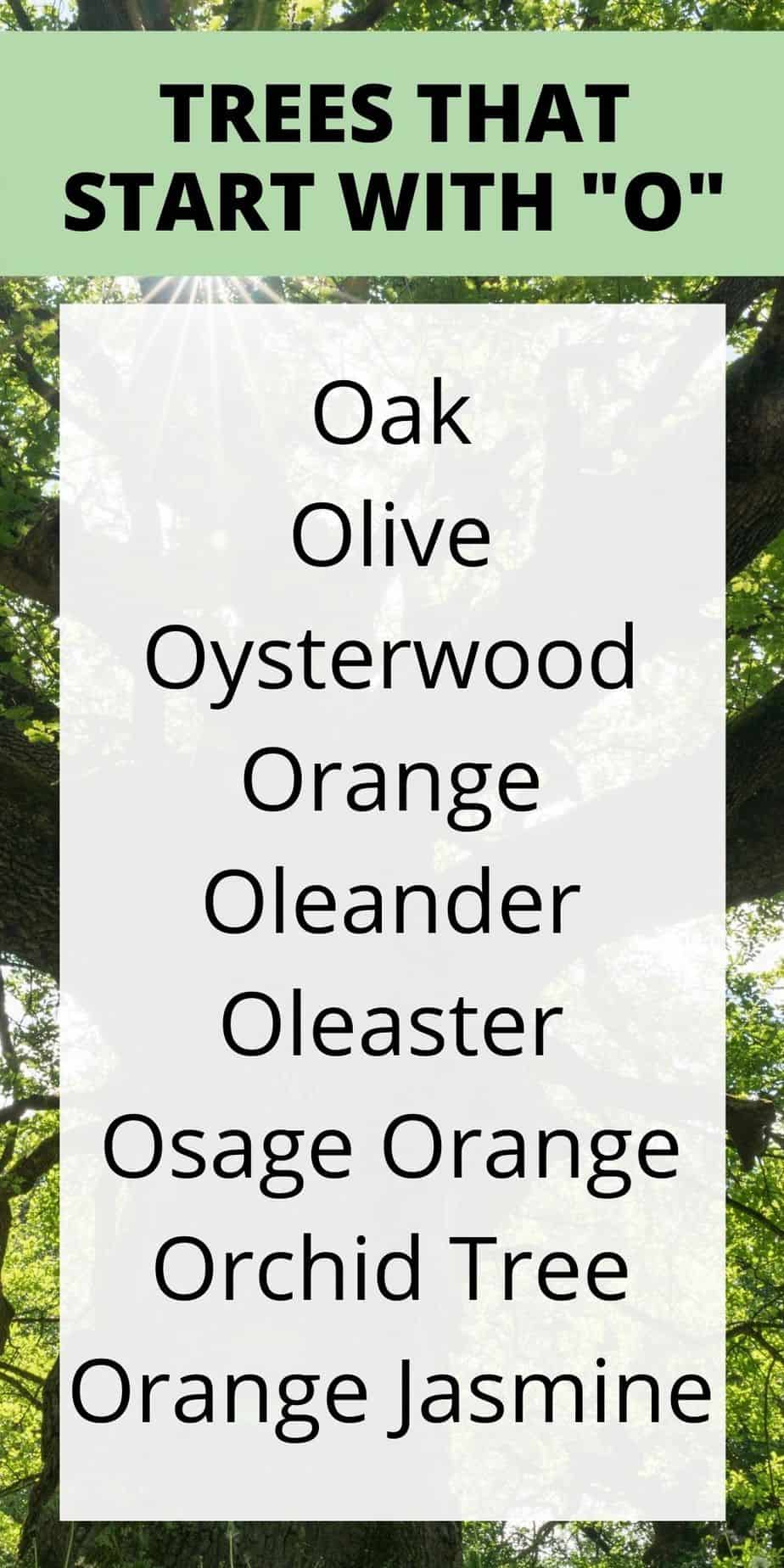 Trees that start with o
