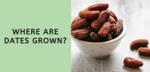 Where are Dates Grown