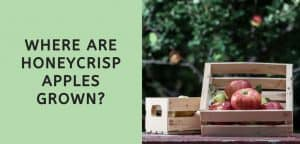 Where are Honeycrisp Apples Grown