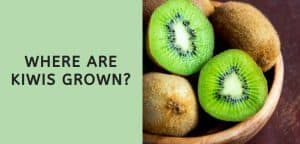 Where are Kiwis Grown
