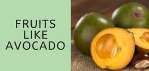 Fruits Like Avocado