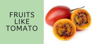 Fruits Like Tomato