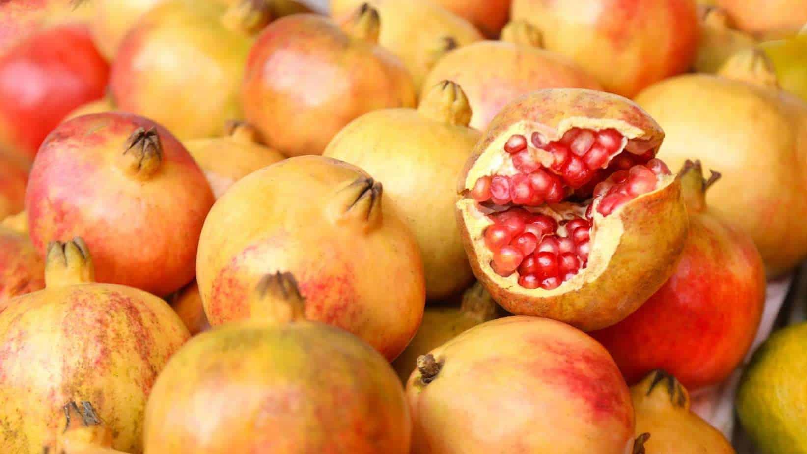 Socotran Pomegranates