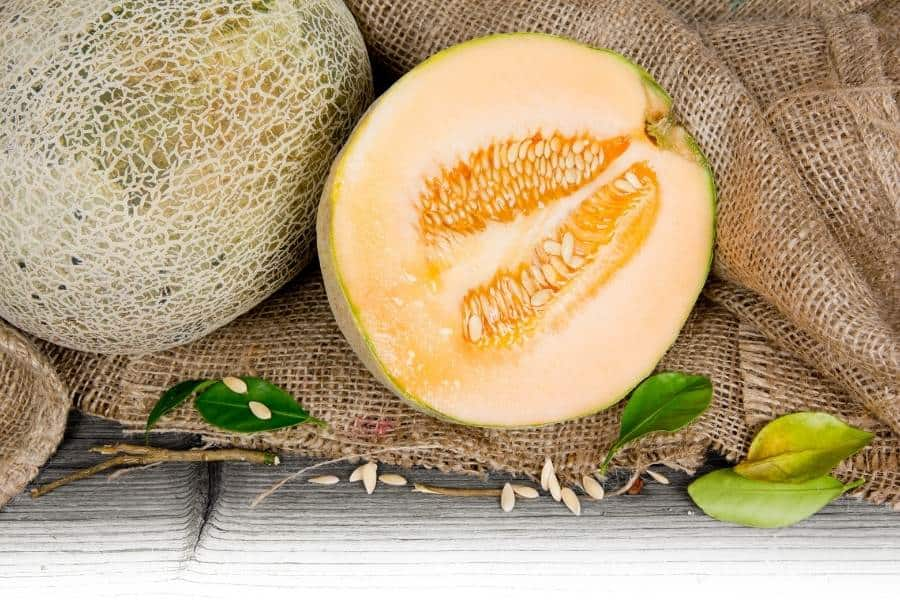 Cantaloupe melon half