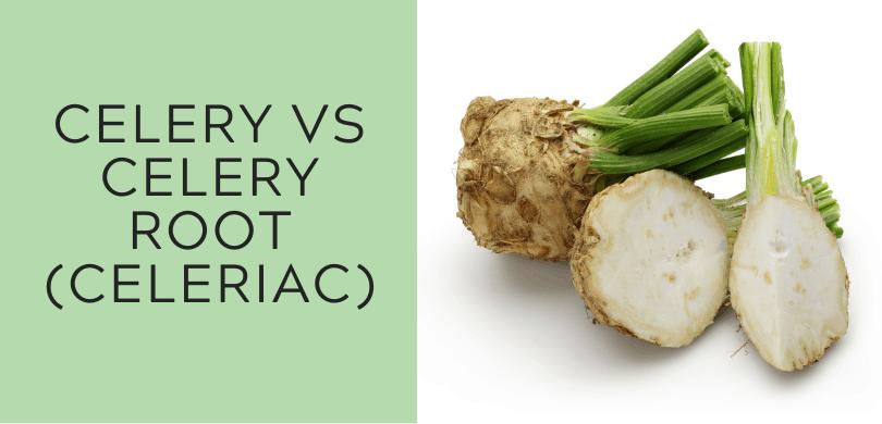 Celery vs Celery Root (Celeriac)