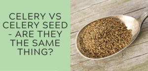 Celery vs Celery Seed - Are They The Same Thing?