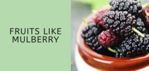 Fruits like mulberry