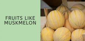 Fruits like muskmelon