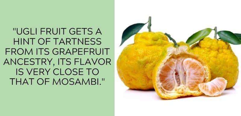 ugli fruit flavor