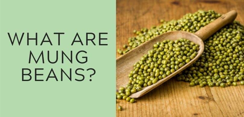 what are mung beans