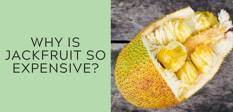 why is jackfruit so expensive