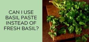 Can I use cilantro instead of basil?