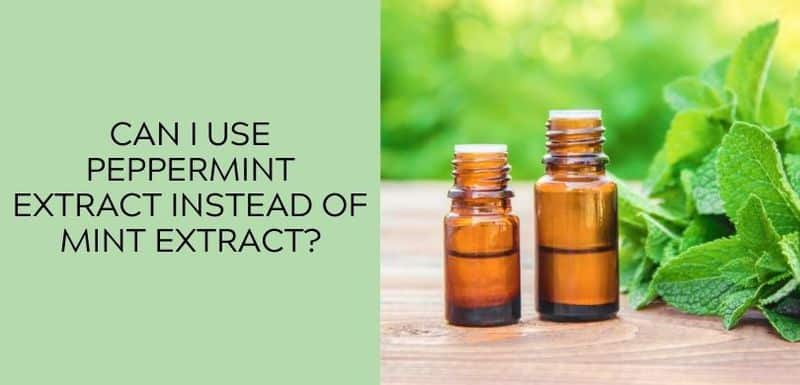 Can I Use Peppermint Extract Instead of Mint Extract?