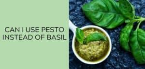 Can I Use Pesto Instead Of Basil?