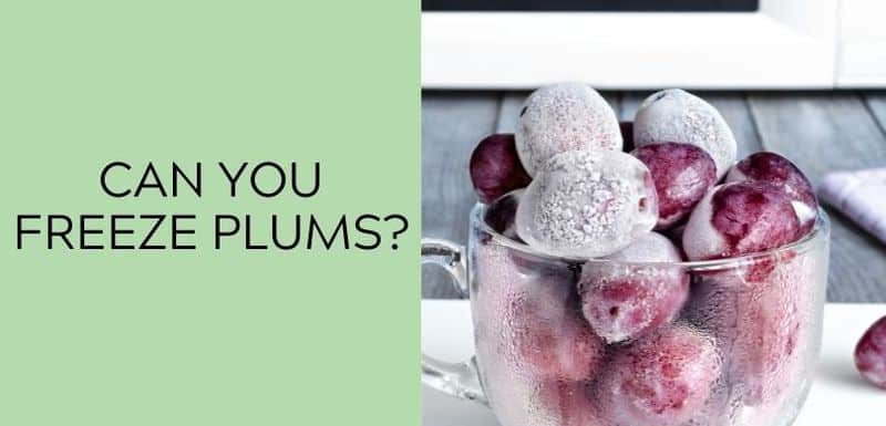 Can You Freeze Plums?