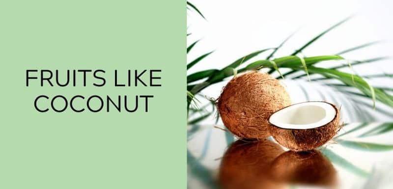 Fruits Like Coconut