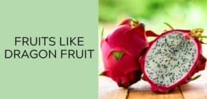 fruits like dragon fruit