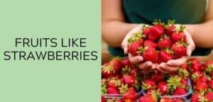 fruits like strawberries