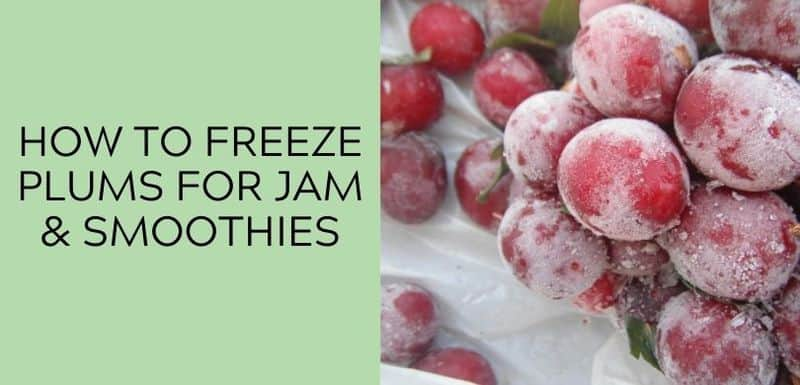 How to Freeze Plums for Jam & Smoothies