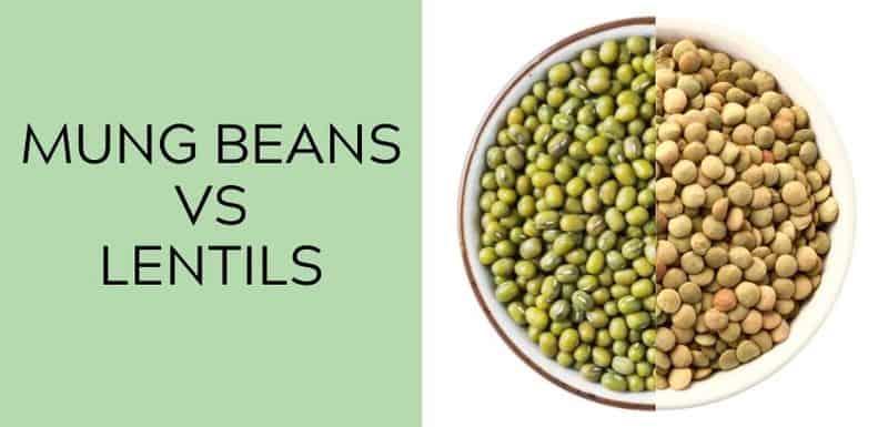 mung beans vs lentils