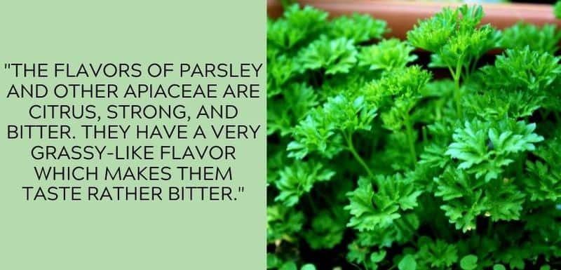 parsley flavors