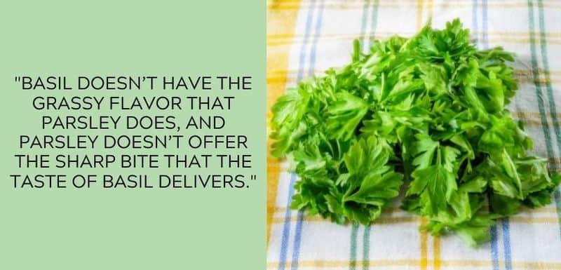 parsley grassy flavor
